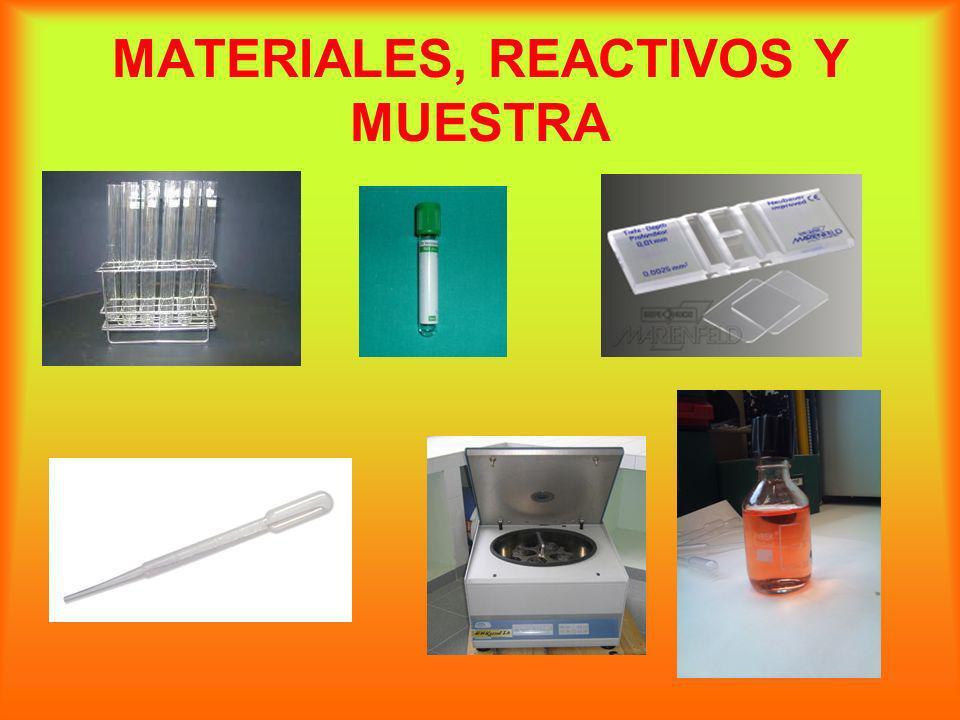 TECNICA En dos tubos de ensayo añadimos líquido separador (llenamos 1/3 de éste por tubo)