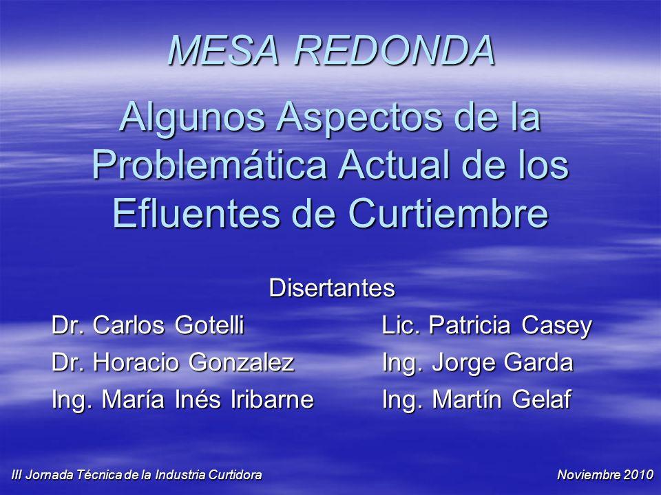 MESA REDONDA Algunos Aspectos de la Problemática Actual de los Efluentes de Curtiembre Disertantes Dr. Carlos GotelliLic. Patricia Casey Dr. Horacio G