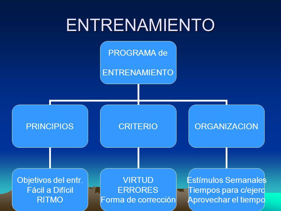 ENTRENAMIENTO PROGRAMA de ENTRENAMIENTO PRINCIPIOS Objetivos del entr. Fácil a Difícil RITMO CRITERIO VIRTUD ERRORES Forma de corrección ORGANIZACION