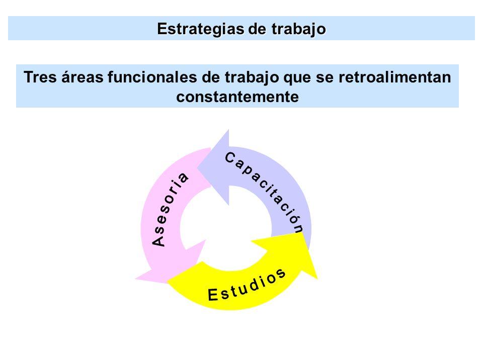 Estrategias de trabajo Tres áreas funcionales de trabajo que se retroalimentan constantemente