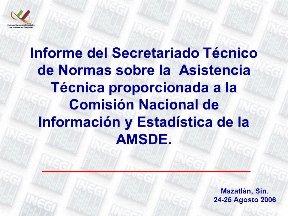 Informe del Secretariado Técnico de Normas sobre la Asistencia Técnica proporcionada a la Comisión Nacional de Información y Estadística de la AMSDE.