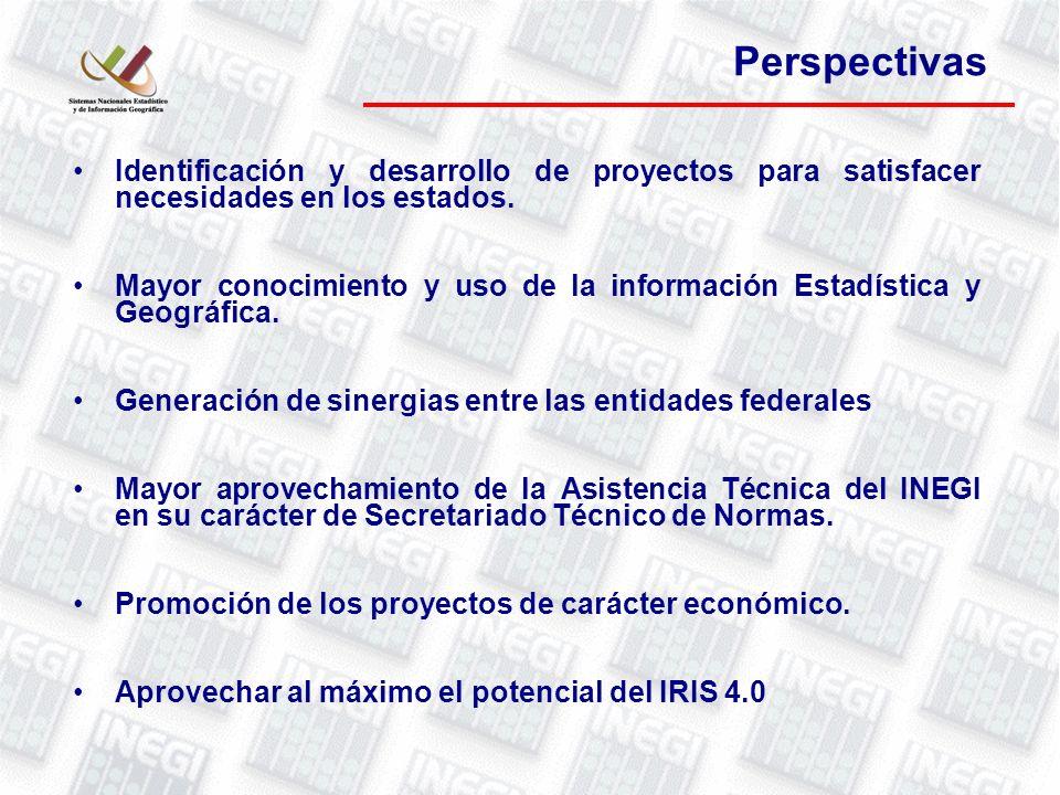 Perspectivas Identificación y desarrollo de proyectos para satisfacer necesidades en los estados.