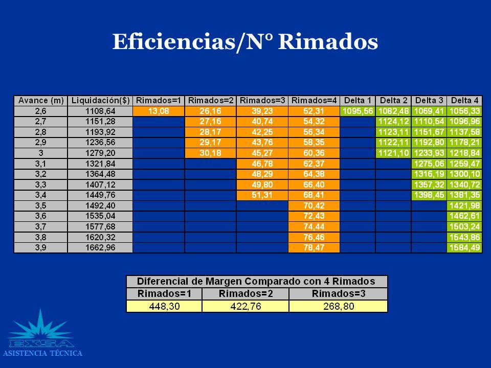 ASISTENCIA TÉCNICA Eficiencias/N° Rimados
