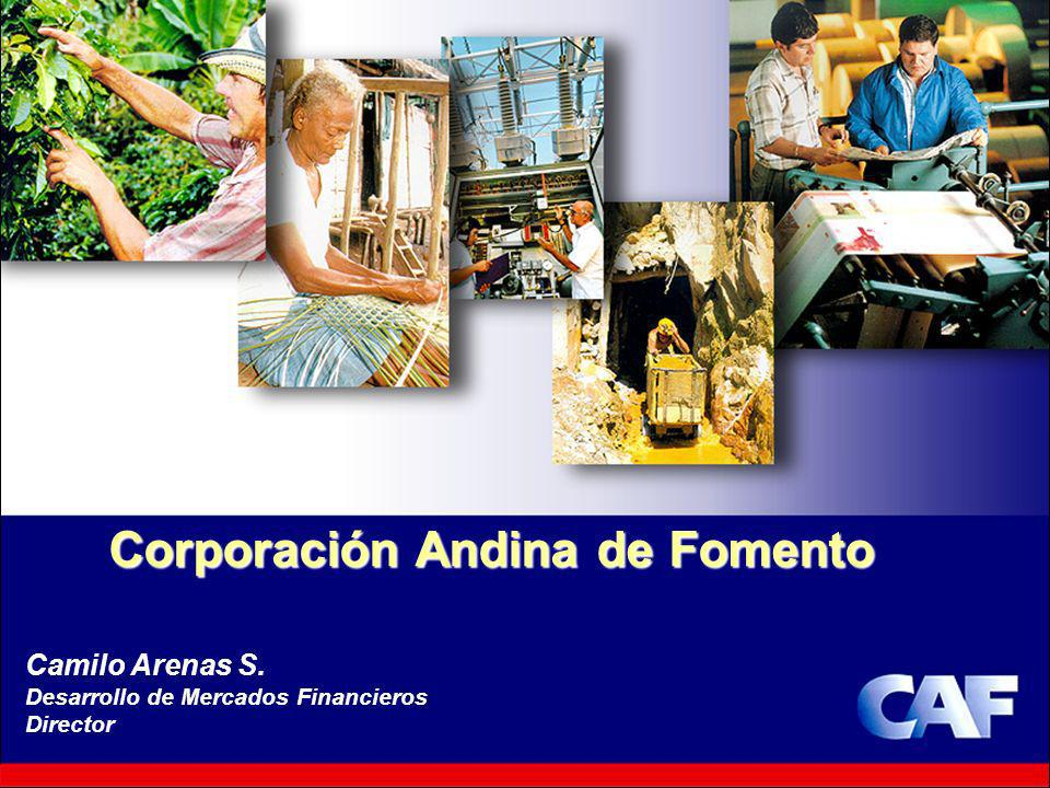18 Corporación Andina de Fomento Camilo Arenas S. Desarrollo de Mercados Financieros Director