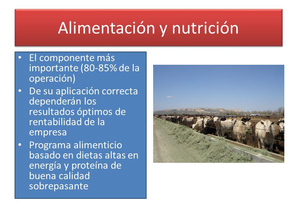 Alimentación y nutrición El componente más importante (80-85% de la operación) De su aplicación correcta dependerán los resultados óptimos de rentabil