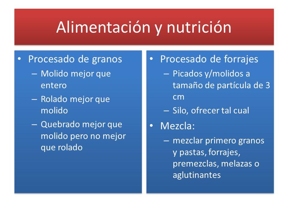 Alimentación y nutrición Procesado de granos – Molido mejor que entero – Rolado mejor que molido – Quebrado mejor que molido pero no mejor que rolado