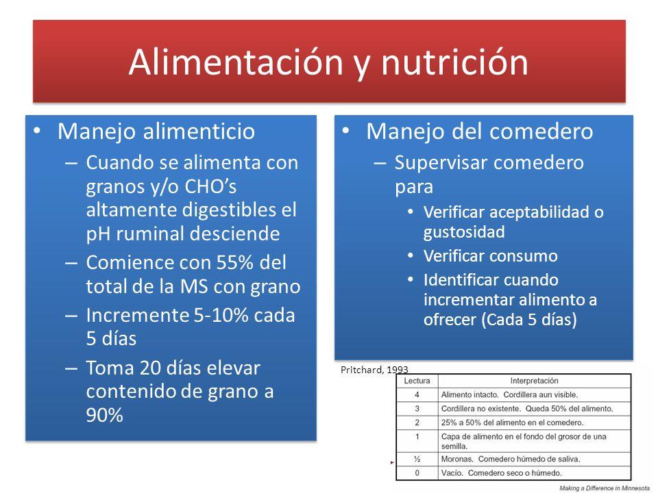 Alimentación y nutrición Manejo alimenticio – Cuando se alimenta con granos y/o CHOs altamente digestibles el pH ruminal desciende – Comience con 55%