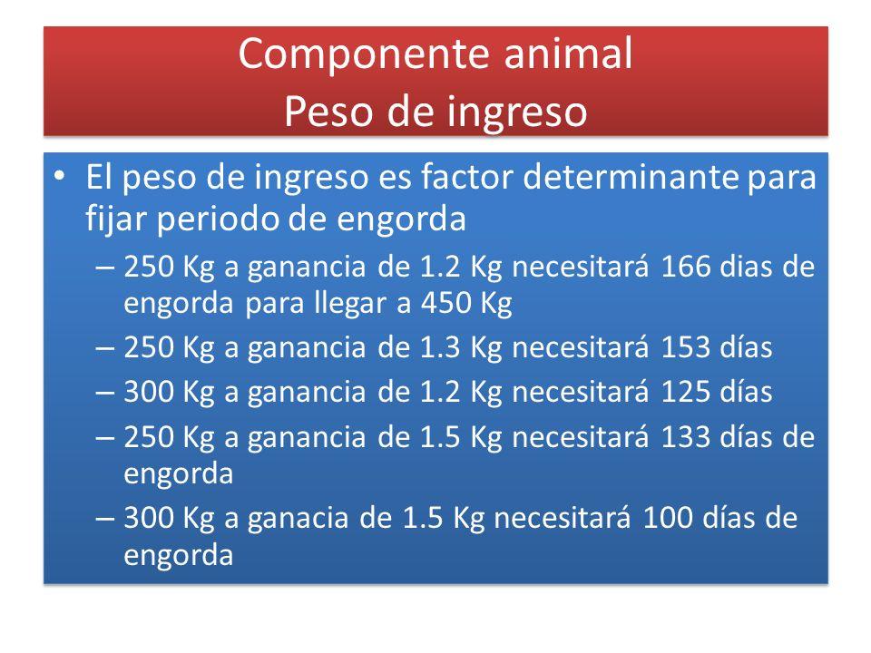 Componente animal Peso de ingreso El peso de ingreso es factor determinante para fijar periodo de engorda – 250 Kg a ganancia de 1.2 Kg necesitará 166