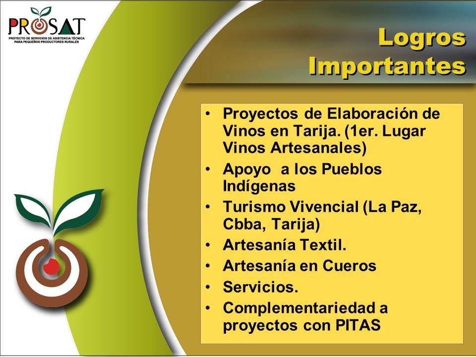 Logros Importantes Proyectos de Elaboración de Vinos en Tarija. (1er. Lugar Vinos Artesanales) Apoyo a los Pueblos Indígenas Turismo Vivencial (La Paz