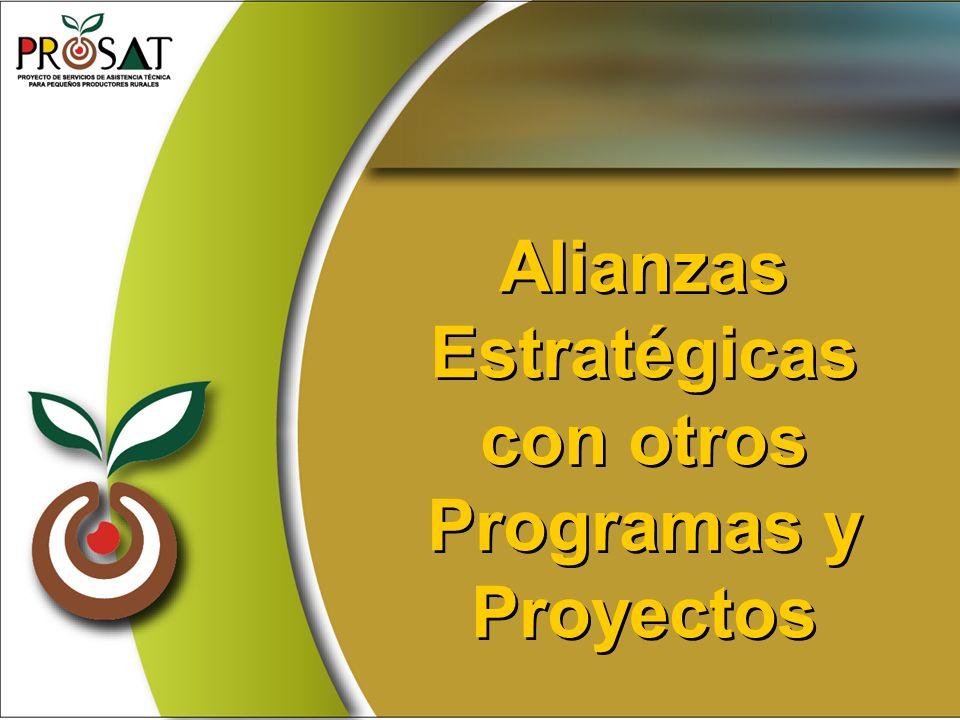 Alianzas Estratégicas con otros Programas y Proyectos Alianzas Estratégicas con otros Programas y Proyectos