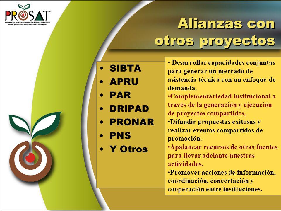 Alianzas con otros proyectos SIBTA APRU PAR DRIPAD PRONAR PNS Y Otros Desarrollar capacidades conjuntas para generar un mercado de asistencia técnica