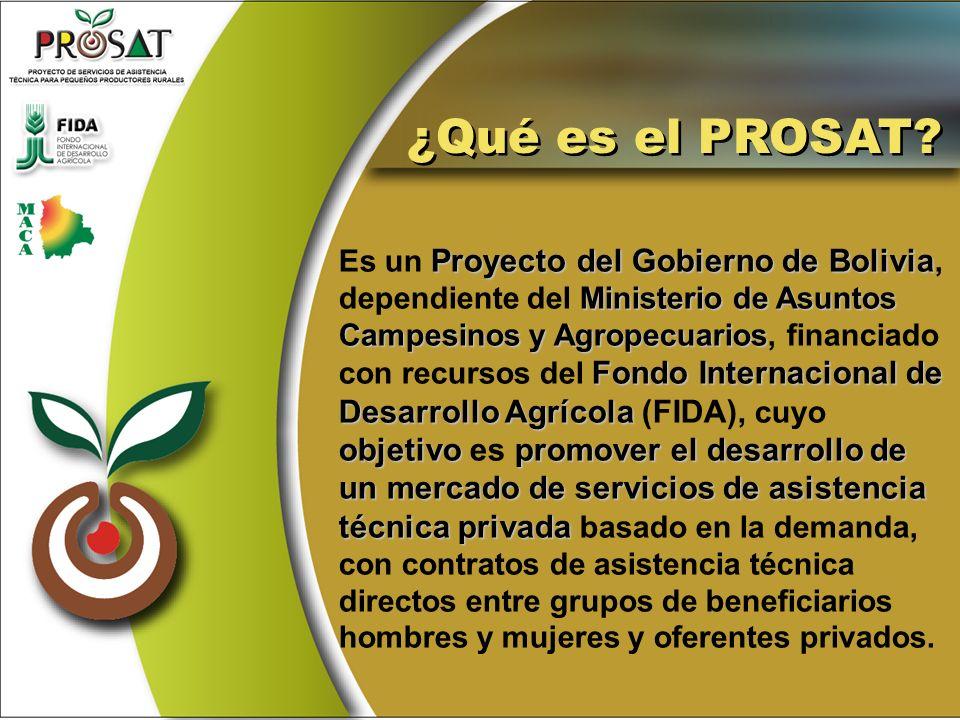 Proyecto del Gobierno de Bolivia Ministerio de Asuntos Campesinos y Agropecuarios Fondo Internacional de Desarrollo Agrícola objetivo promover el desa