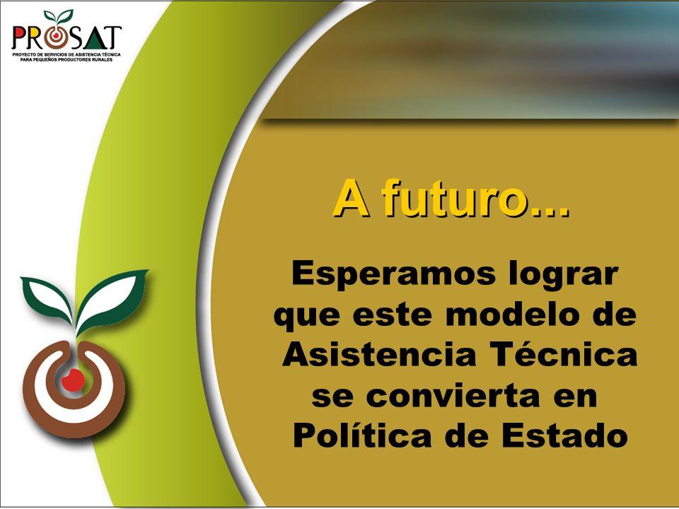 A futuro... Esperamos lograr que este modelo de Asistencia Técnica se convierta en Política de Estado