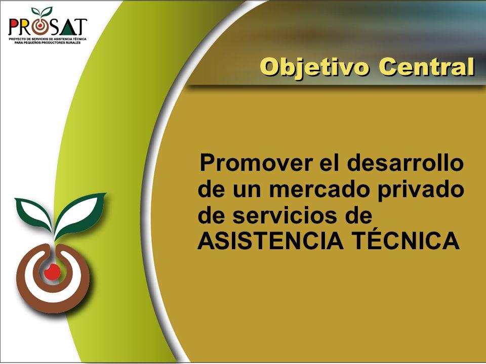 Objetivo Central Promover el desarrollo de un mercado privado de servicios de ASISTENCIA TÉCNICA
