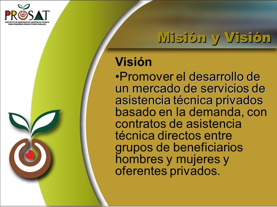 Visión desarrollo de un mercado de servicios de asistencia técnica privadosPromover el desarrollo de un mercado de servicios de asistencia técnica pri