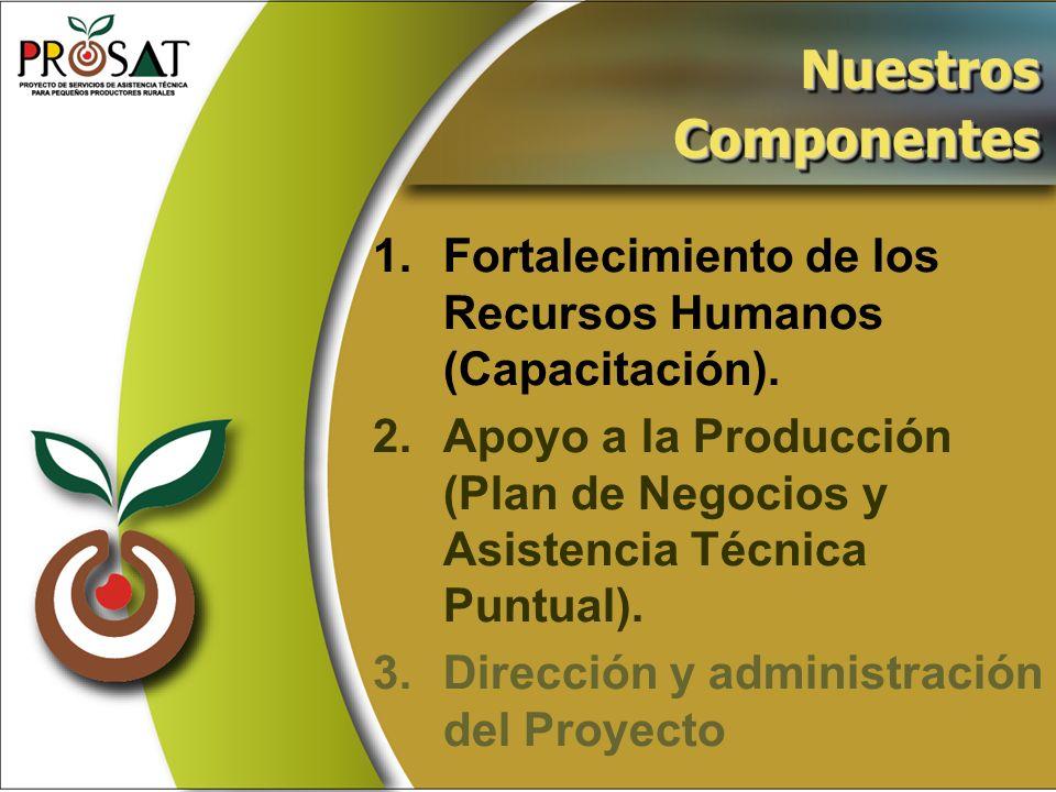 1.Fortalecimiento de los Recursos Humanos (Capacitación). 2.Apoyo a la Producción (Plan de Negocios y Asistencia Técnica Puntual). 3.Dirección y admin
