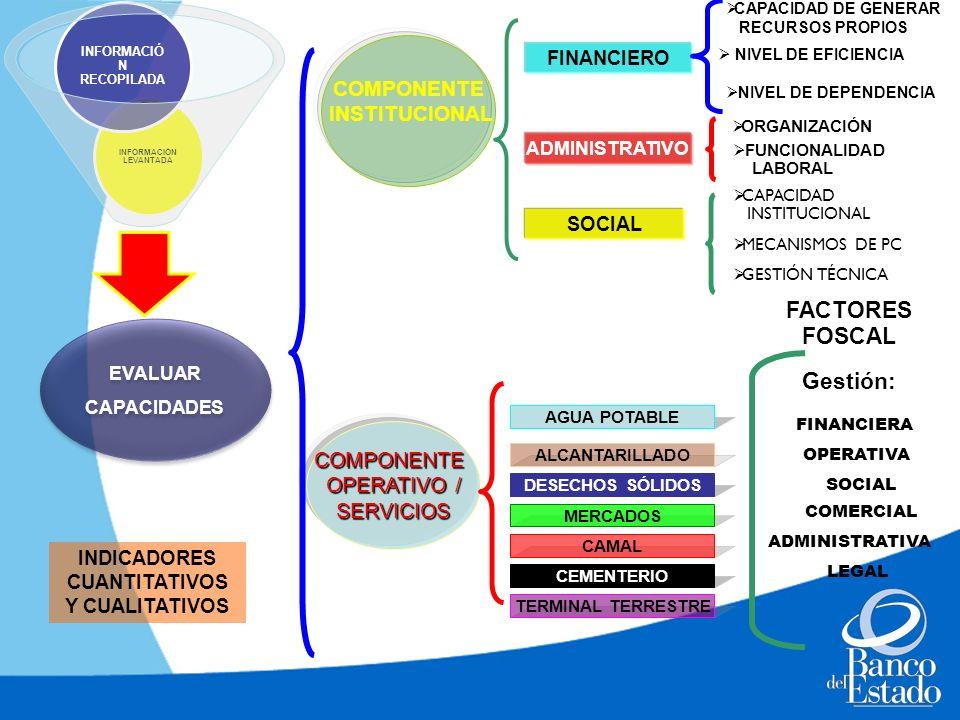 EVALUAR CAPACIDADES EVALUAR CAPACIDADES INFORMACIÓN LEVANTADA INFORMACIÓ N RECOPILADA COMPONENTE INSTITUCIONAL COMPONENTE OPERATIVO / SERVICIOS FINANC