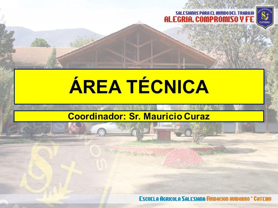 ÁREA TÉCNICA Coordinador: Sr. Mauricio Curaz
