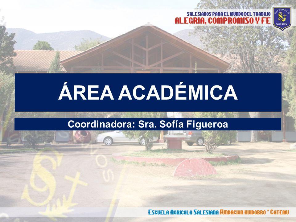 ÁREA ACADÉMICA Coordinadora: Sra. Sofía Figueroa
