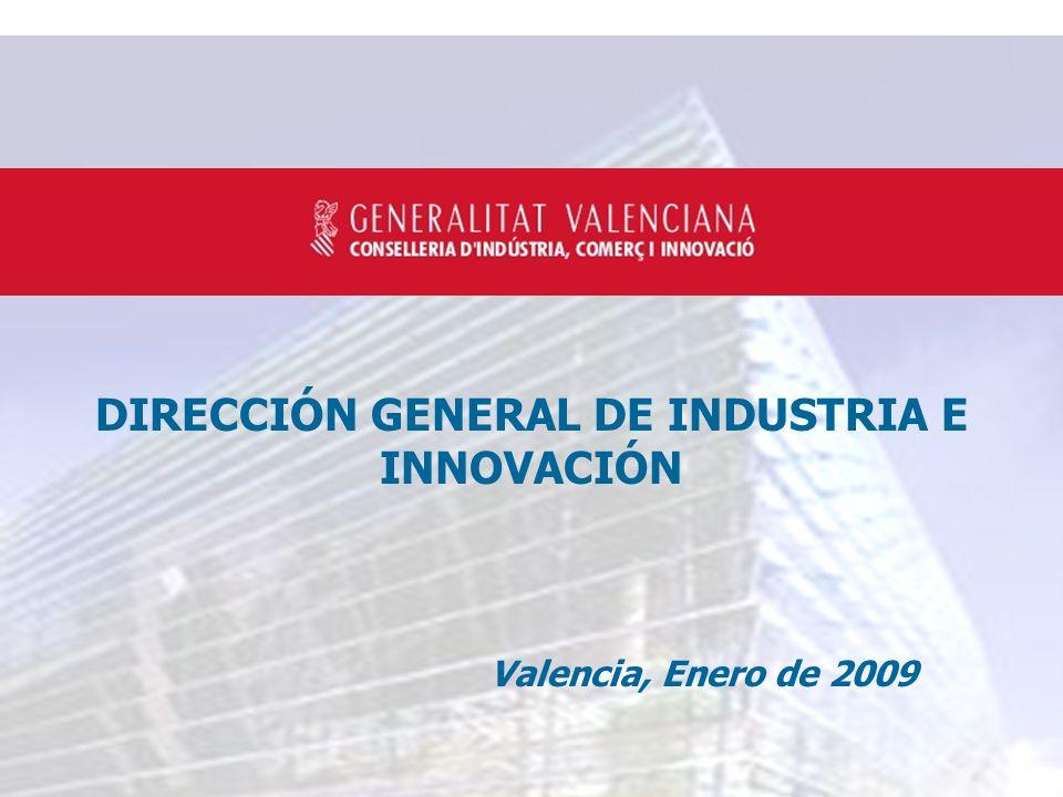 DIRECCIÓN GENERAL DE INDUSTRIA E INNOVACIÓN Valencia, Enero de 2009