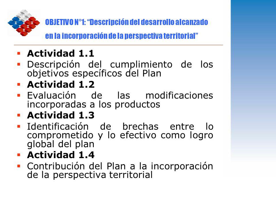 OBJETIVO N°1: Descripción del desarrollo alcanzado en la incorporación de la perspectiva territorial Actividad 1.1 Descripción del cumplimiento de los