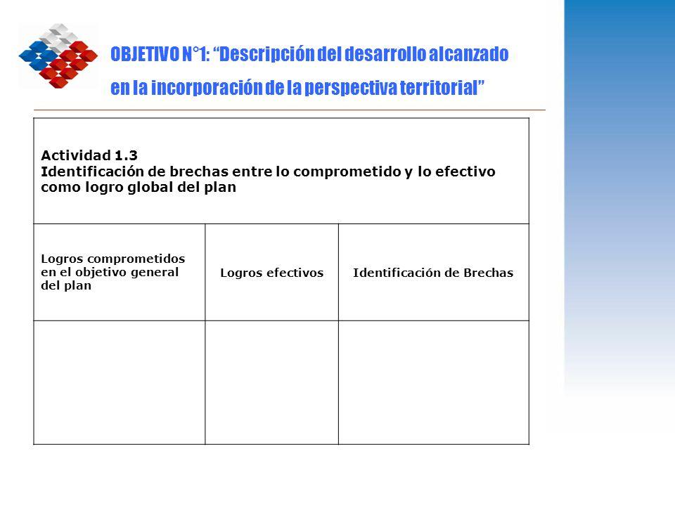 OBJETIVO N°1: Descripción del desarrollo alcanzado en la incorporación de la perspectiva territorial Actividad 1.3 Identificación de brechas entre lo