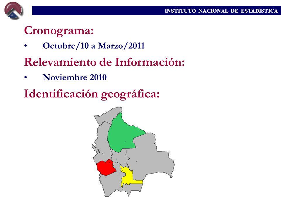 INSTITUTO NACIONAL DE ESTADÍSTICA Cronograma: Octubre/10 a Marzo/2011 Relevamiento de Información: Noviembre 2010 Identificación geográfica: INSTITUTO