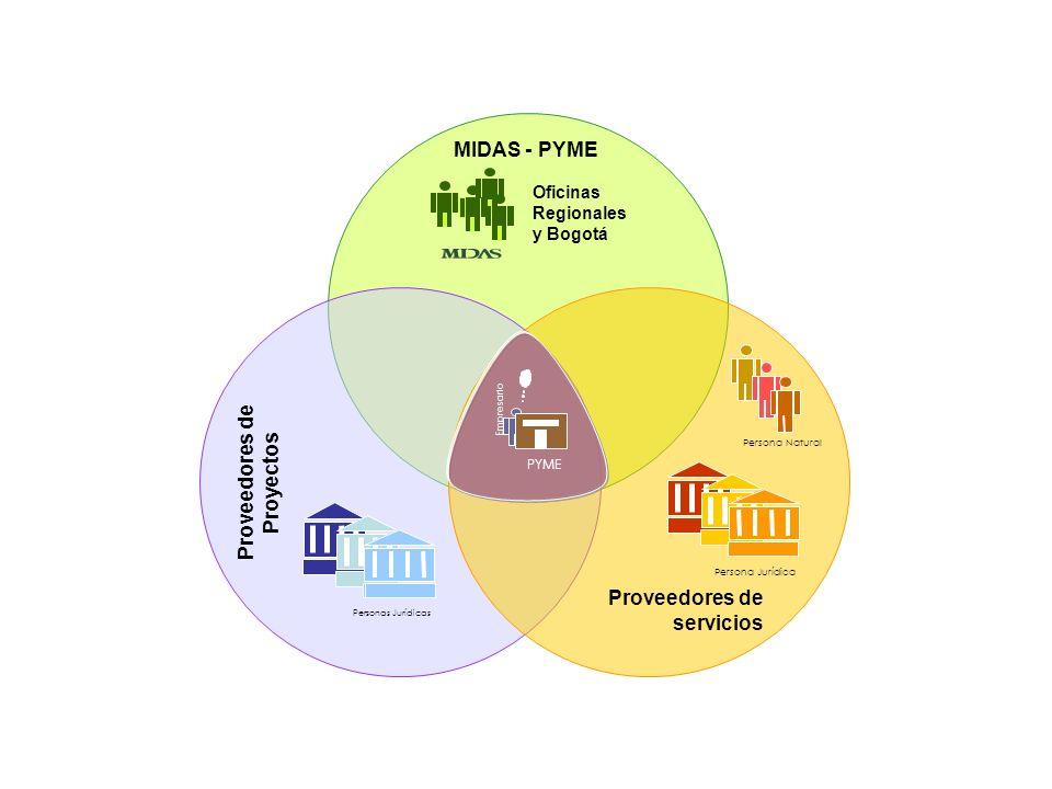 Actores Involucrados Proveedores de servicios Oficinas Regionales y Bogotá Persona Natural Proveedores de Proyectos PYME Empresario MIDAS - PYME Personas Jurídicas Persona Jurídica