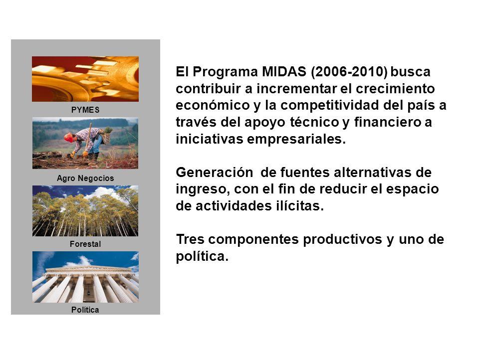 El Programa MIDAS (2006-2010) busca contribuir a incrementar el crecimiento económico y la competitividad del país a través del apoyo técnico y financiero a iniciativas empresariales.