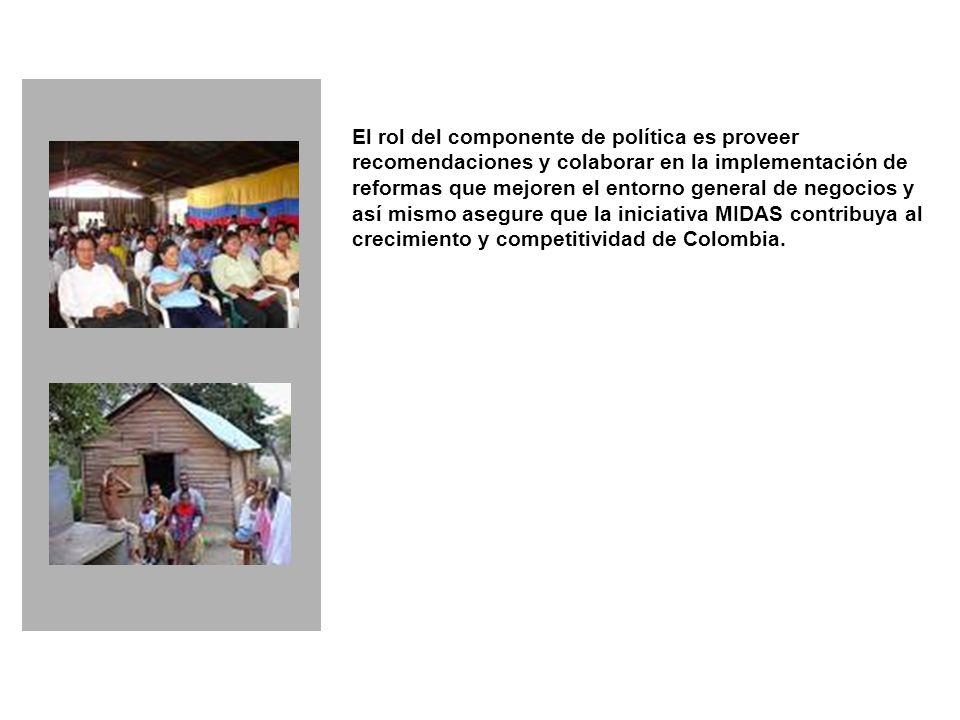 El rol del componente de política es proveer recomendaciones y colaborar en la implementación de reformas que mejoren el entorno general de negocios y así mismo asegure que la iniciativa MIDAS contribuya al crecimiento y competitividad de Colombia.