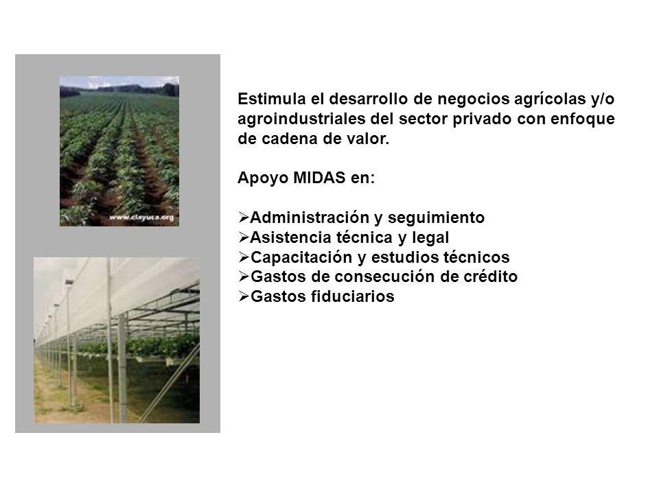 Estimula el desarrollo de negocios agrícolas y/o agroindustriales del sector privado con enfoque de cadena de valor.