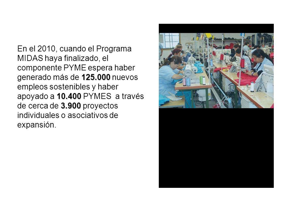 125.000 10.400 3.900 En el 2010, cuando el Programa MIDAS haya finalizado, el componente PYME espera haber generado más de 125.000 nuevos empleos sostenibles y haber apoyado a 10.400 PYMES a través de cerca de 3.900 proyectos individuales o asociativos de expansión.