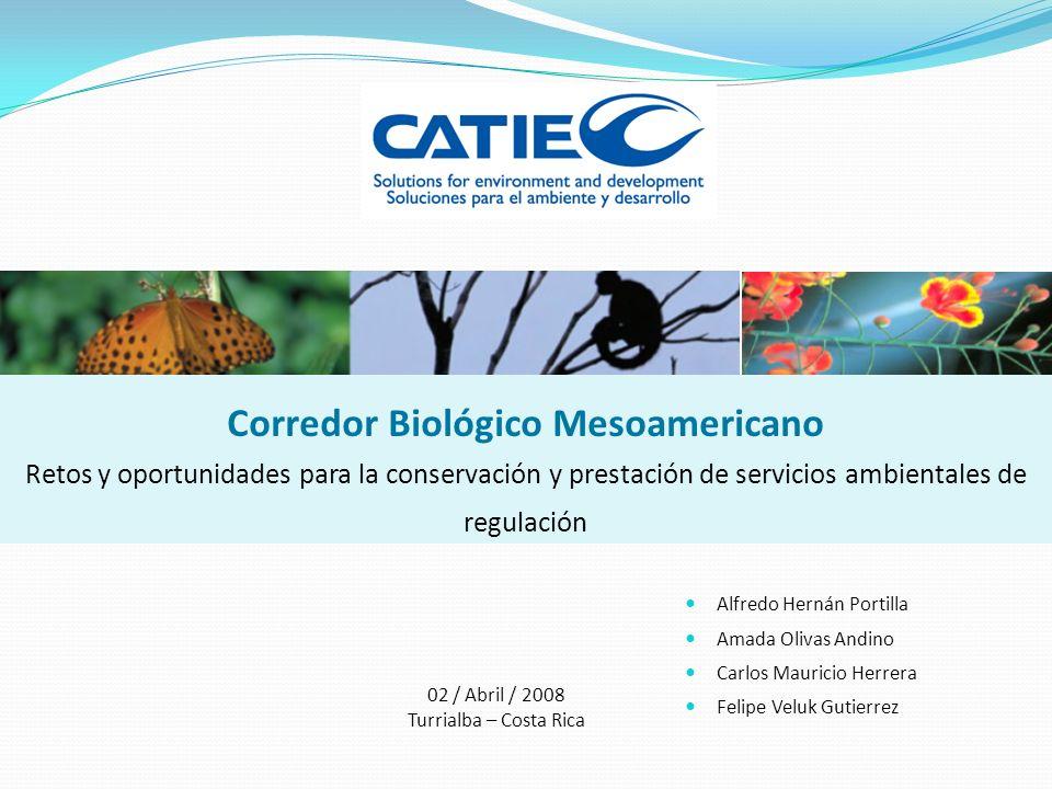 Corredor Mesoamericano y prestación de servicios ambientales (II) Protección cuencas Control biológico de plagas Control de erosión-protección de suelo-formación y fertilidad del suelo Fijación y ciclaje de nutrientes