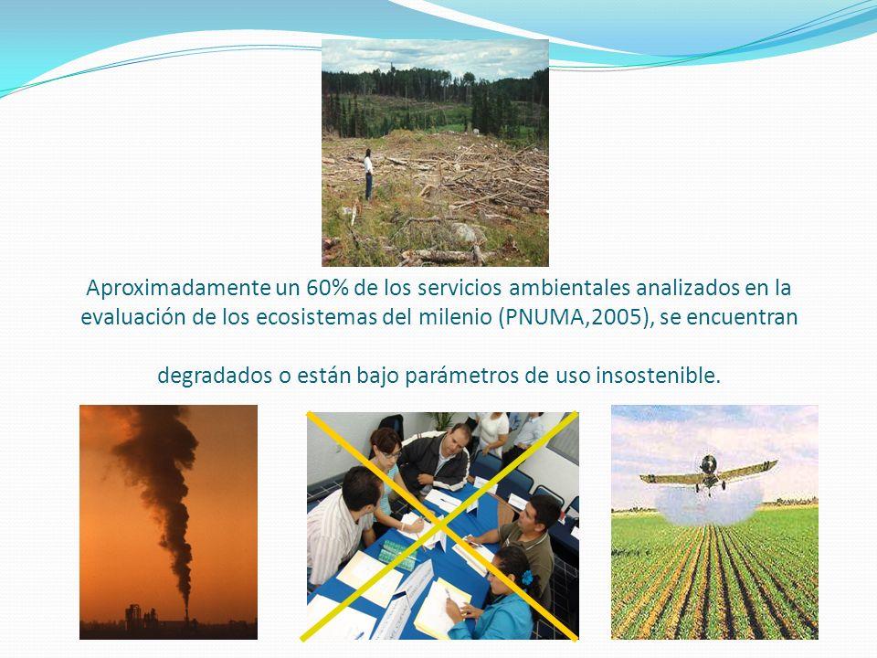Aproximadamente un 60% de los servicios ambientales analizados en la evaluación de los ecosistemas del milenio (PNUMA,2005), se encuentran degradados