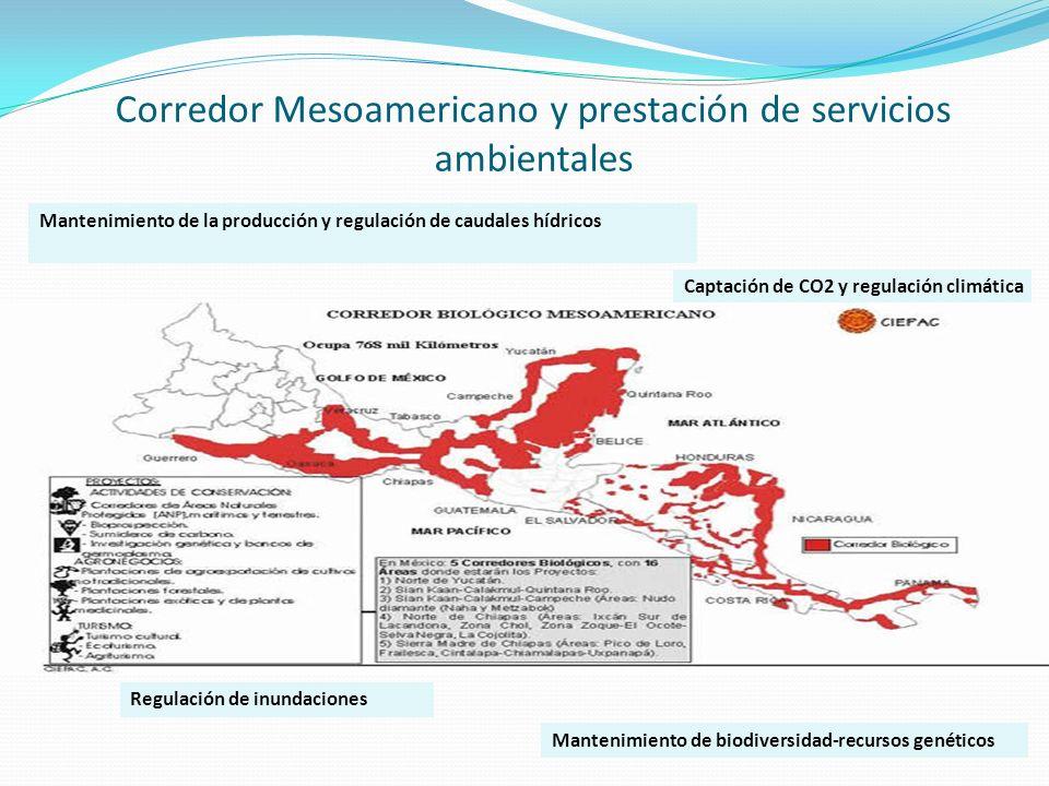 Corredor Mesoamericano y prestación de servicios ambientales Mantenimiento de biodiversidad-recursos genéticos Mantenimiento de la producción y regula