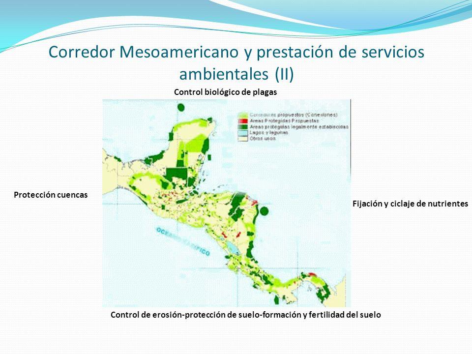 Corredor Mesoamericano y prestación de servicios ambientales (II) Protección cuencas Control biológico de plagas Control de erosión-protección de suel