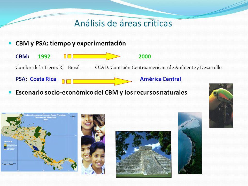 Análisis de áreas críticas CBM y PSA: tiempo y experimentación CBM: 1992 2000 Cumbre de la Tierra: RJ - Brasil CCAD: Comisión Centroamericana de Ambie