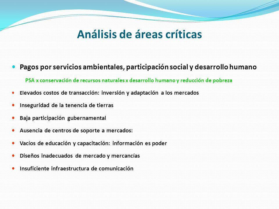 Análisis de áreas críticas Pagos por servicios ambientales, participación social y desarrollo humano PSA x conservación de recursos naturales x desarr