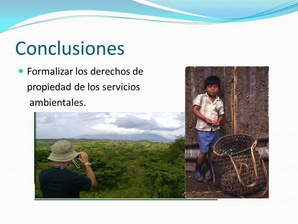 Conclusiones Formalizar los derechos de propiedad de los servicios ambientales.