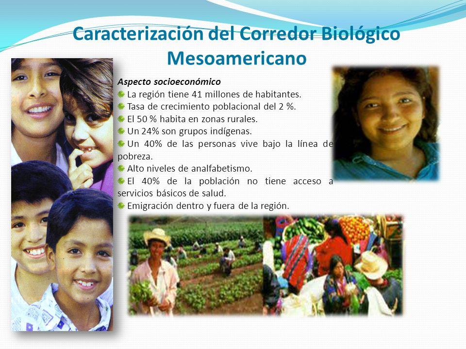 12 % de la riqueza biológica del mundo en 2 % de área continental 20 mil especies de flora y fauna.