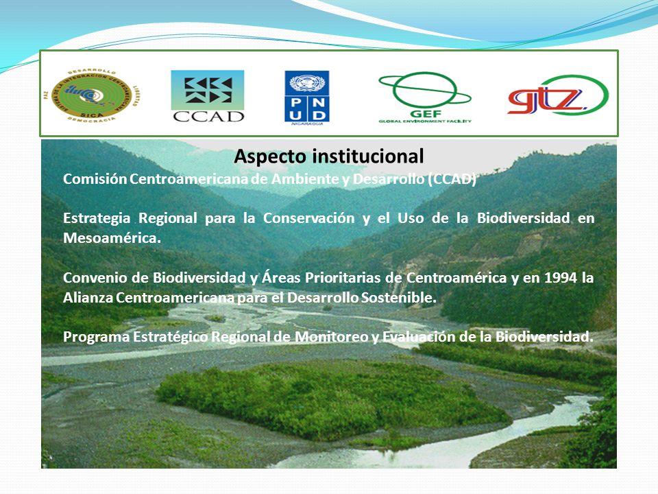 Aspecto institucional Comisión Centroamericana de Ambiente y Desarrollo (CCAD) Estrategia Regional para la Conservación y el Uso de la Biodiversidad e