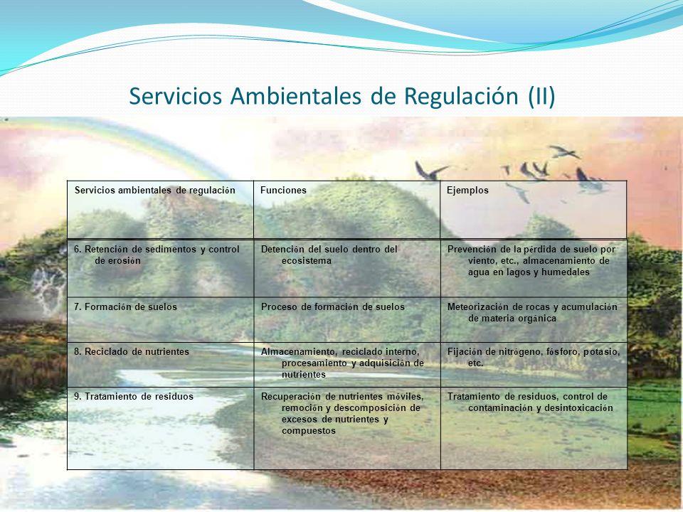 Servicios Ambientales de Regulación (II) 6. Retenci ó n de sedimentos y control de erosi ó n Detenci ó n del suelo dentro del ecosistema Prevenci ó n