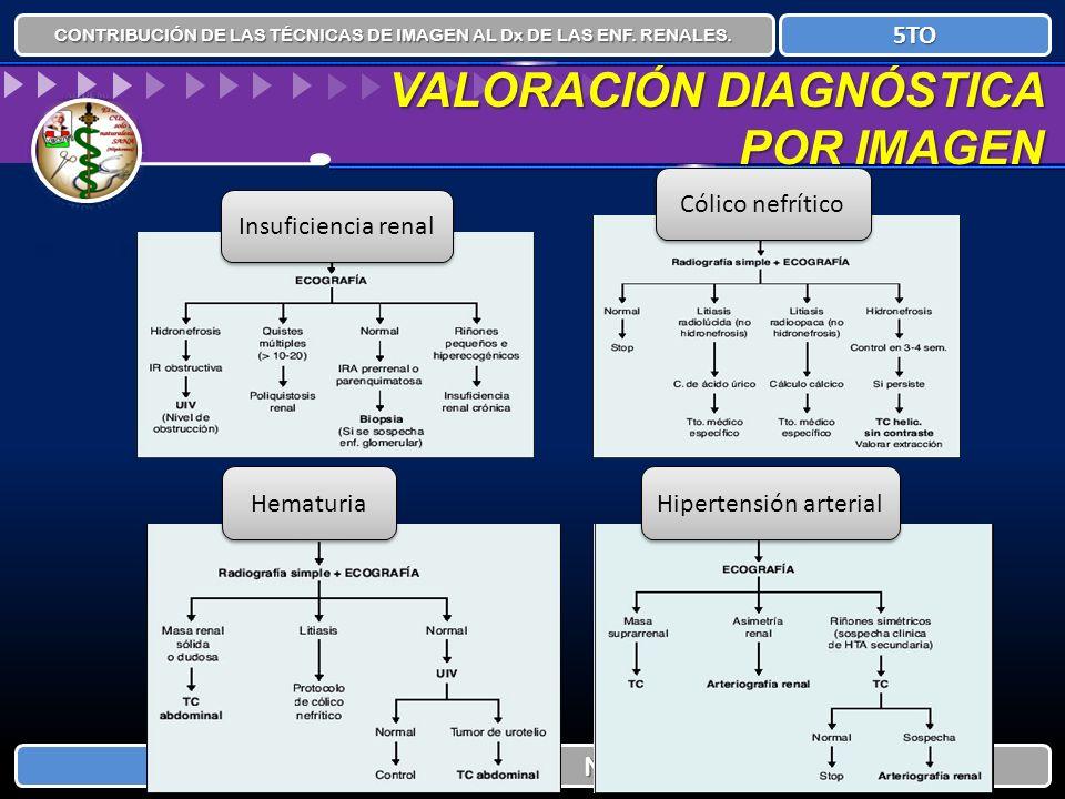 CONTRIBUCIÓN DE LAS TÉCNICAS DE IMAGEN AL Dx DE LAS ENF. RENALES. NEFROLOGÍA 5TO VALORACIÓN DIAGNÓSTICA POR IMAGEN Insuficiencia renal Hematuria Cólic