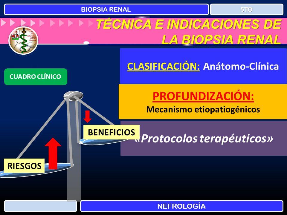 TÉCNICA E INDICACIONES DE LA BIOPSIA RENAL BIOPSIA RENAL NEFROLOGÍA 5TO CLASIFICACIÓN: Anátomo-Clínica PROFUNDIZACIÓN: Mecanismo etiopatiogénicos «Pro