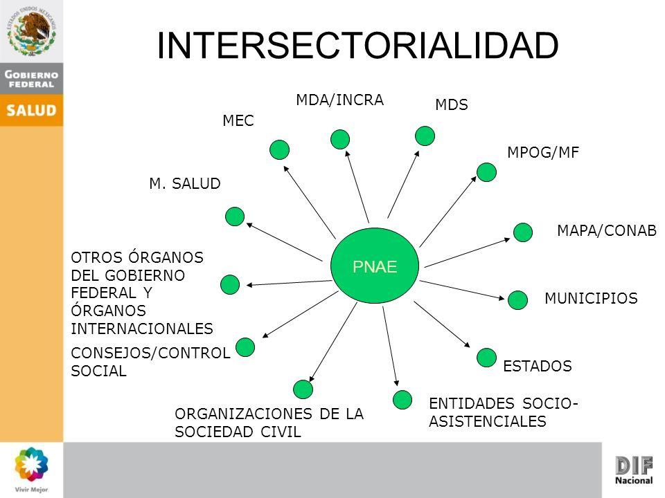 MDS PNAE MUNICIPIOS OTROS ÓRGANOS DEL GOBIERNO FEDERAL Y ÓRGANOS INTERNACIONALES ESTADOS MAPA/CONAB MDA/INCRA CONSEJOS/CONTROL SOCIAL ORGANIZACIONES D