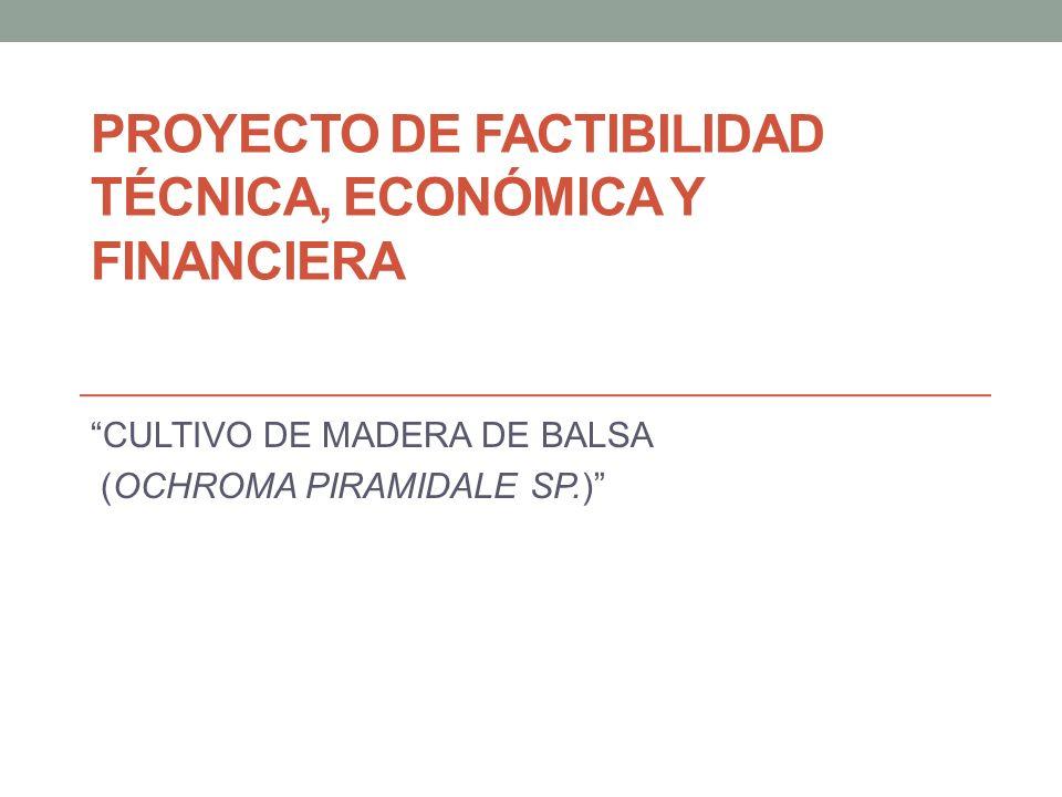 PROYECTO DE FACTIBILIDAD TÉCNICA, ECONÓMICA Y FINANCIERA CULTIVO DE MADERA DE BALSA (OCHROMA PIRAMIDALE SP.)