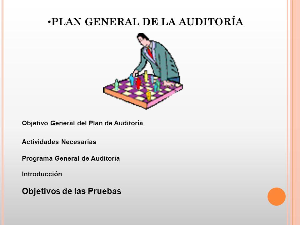 PLAN GENERAL DE LA AUDITORÍA Objetivo General del Plan de Auditoría Actividades Necesarias Programa General de Auditoría Introducción Objetivos de las