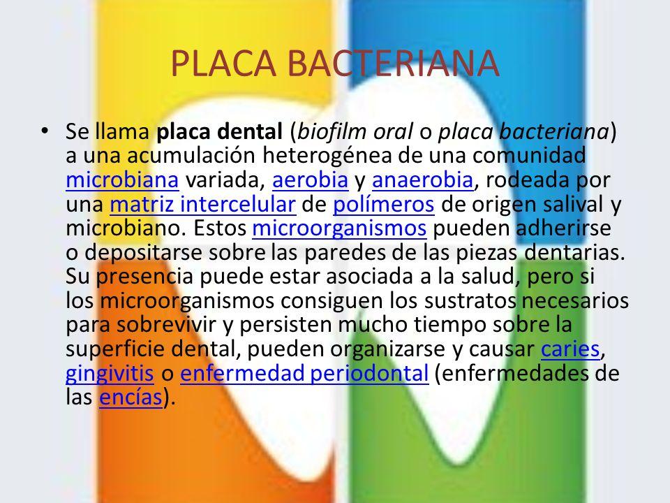 PLACA BACTERIANA Se llama placa dental (biofilm oral o placa bacteriana) a una acumulación heterogénea de una comunidad microbiana variada, aerobia y