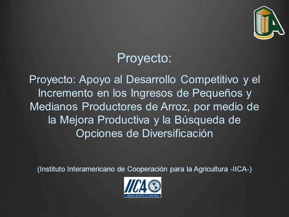 Proyecto: Proyecto: Apoyo al Desarrollo Competitivo y el Incremento en los Ingresos de Pequeños y Medianos Productores de Arroz, por medio de la Mejor