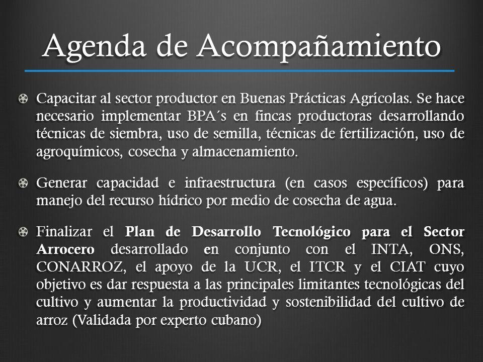 Agenda de Acompañamiento Capacitar al sector productor en Buenas Prácticas Agrícolas. Se hace necesario implementar BPA´s en fincas productoras desarr